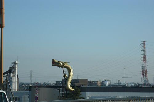rising dragon  - photo : LEICA D-LUX3 DC Vario-Elmarit f2.8-4.9/9-23 ASPH