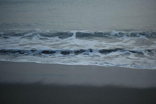 photo : LEICA M8 + Noctilux-M 1:1/50