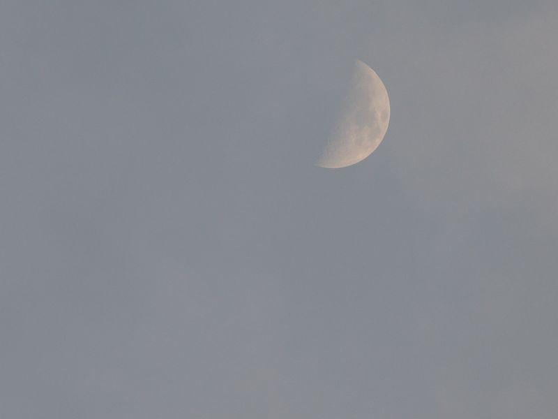 L1010125